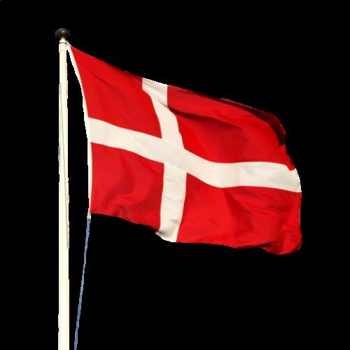 Lille flag til festsange